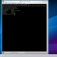 kubuntu 14 04 bash konsole 200x200 Kubuntu 14.04 LTS Trusty Tahr : Video Review and Screenshot Tour