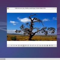 lubuntu 14-04 image viewer