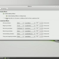 Linux Mint 17 Qiana Cinnamon Edition #23