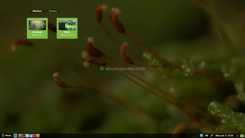 Cinnammon theme Minty available on PPA, Lets Download and install on Ubuntu 11.10-change cinnamon theme minty - change minty