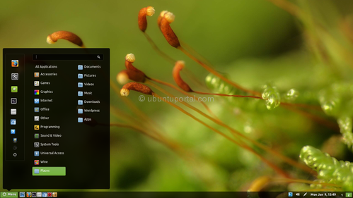 cinnamon theme minty cinnamon minty Cinnamon Theme Minty available on PPA, Lets Download and install on Ubuntu 11.10