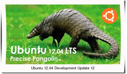 Ubuntu 12.04 Development Update 12